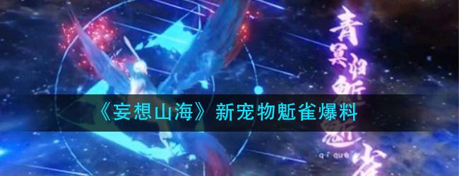 妄想山海鬿雀是什么-新宠物鬿雀爆料