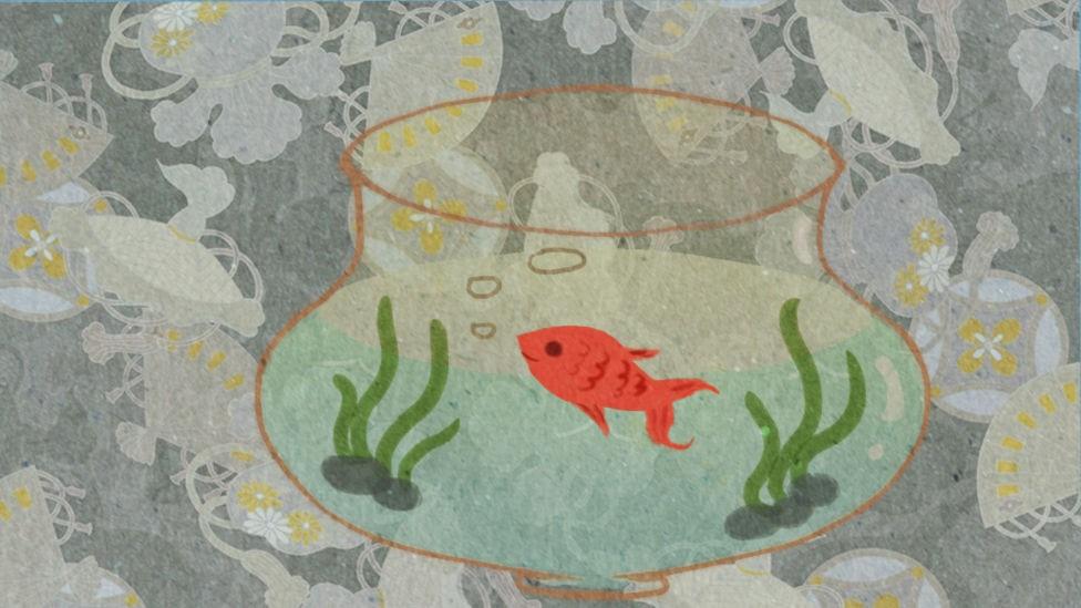 鱼悠悠养成计划截图4
