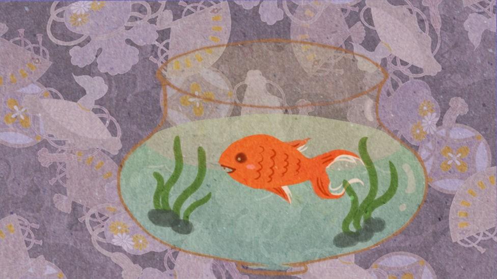 鱼悠悠养成计划截图5
