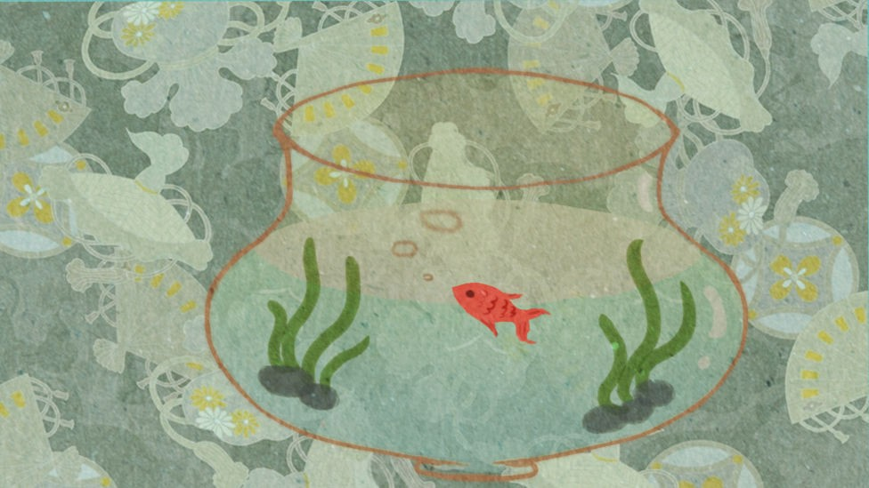 鱼悠悠养成计划截图3