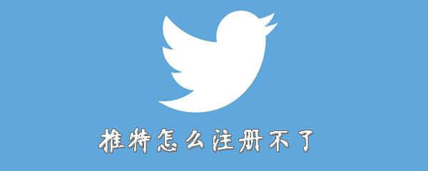 Twitter怎么注册不了-注册失败解决方法说明